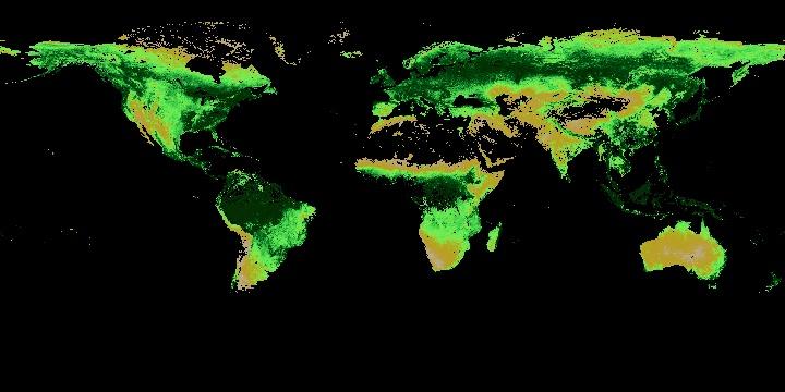 Leaf Area Index (1 month - Terra/MODIS) | NASA