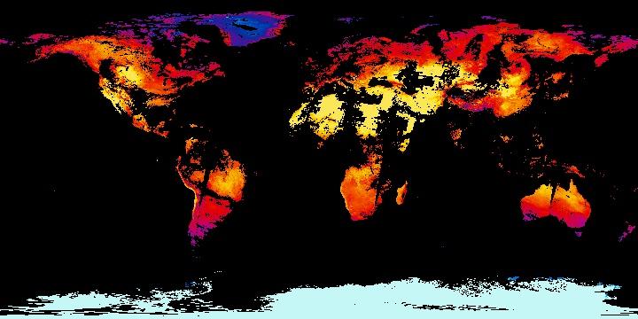 Land Surface Temperature [Day] (1 day - Terra/MODIS) | NASA